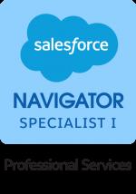 Nav-SP-I-Professional-Services